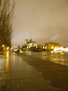 Notre-Dame, all the better for the blurriness.
