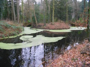 A former moat surrounding a German manor house.
