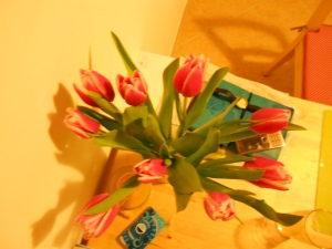 The last tulips I bought at Imke's place in Berlin.