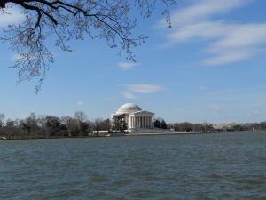 Jefferson sans cherry blossoms.
