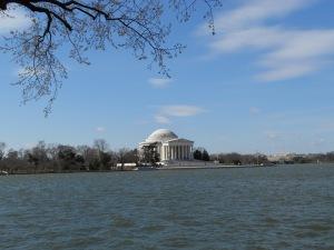 Jefferson sans cherry blossoms.