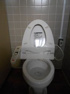 Japanese toilets are actually the best in the world, no lie.