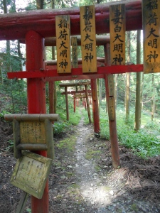 So many things on this pilgrimage were lost on me (like the meaning of these red wooden gates), and I am determined to return to the walk at some point in my future with much better Japanese!