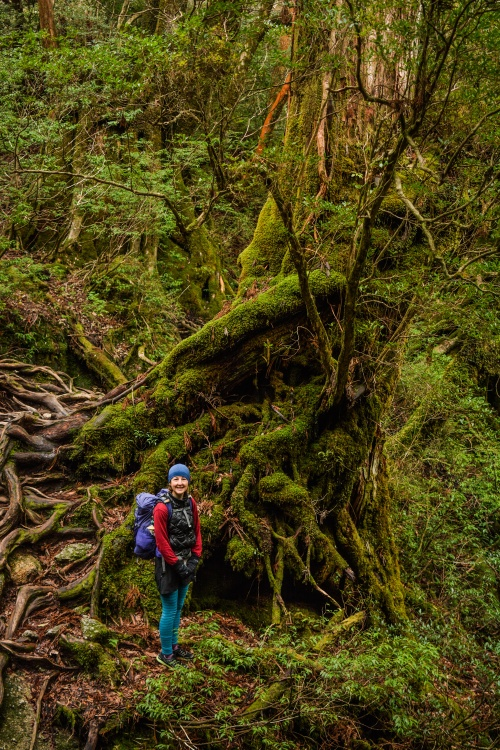 Day Two Jomon Sugi Hike (18 of 32)
