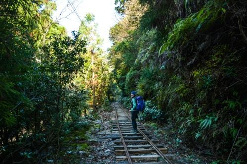 Yakkushima (Photos by Kelley Van Dilla) (5 of 24)