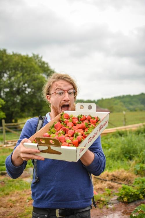 Blog Strawberries!!! (Photos by Kelley Van Dilla) (22 of 24)