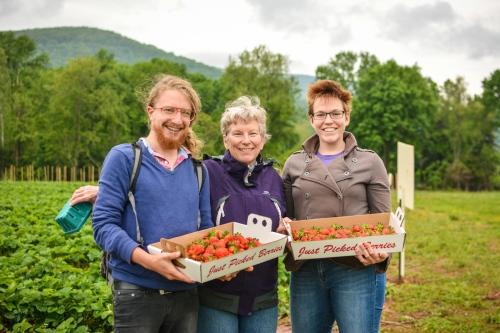 Blog Strawberries!!! (Photos by Kelley Van Dilla) (23 of 24)