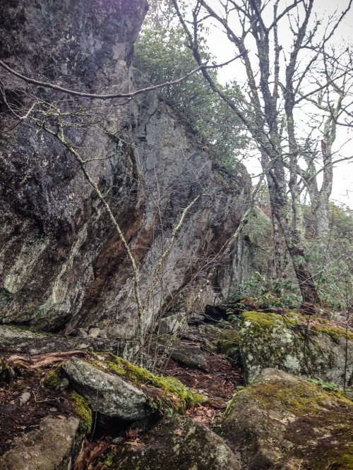 hike-with-lizzie-photos-by-kelley-van-dilla-12-of-12